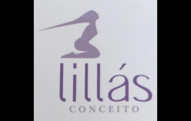 Salão Lilás Conceito